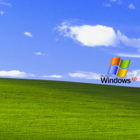 Código fuente de Windows XP se filtró a Internet